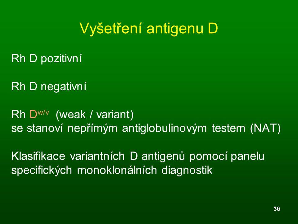 Vyšetření antigenu D Rh D pozitivní Rh D negativní