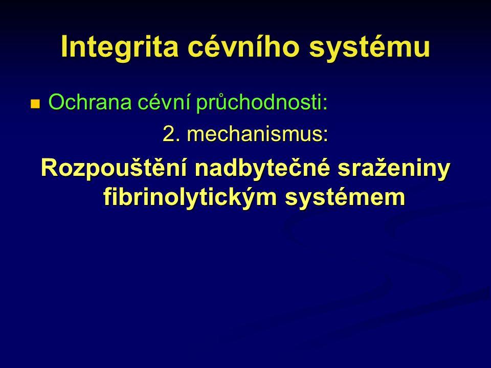 Integrita cévního systému