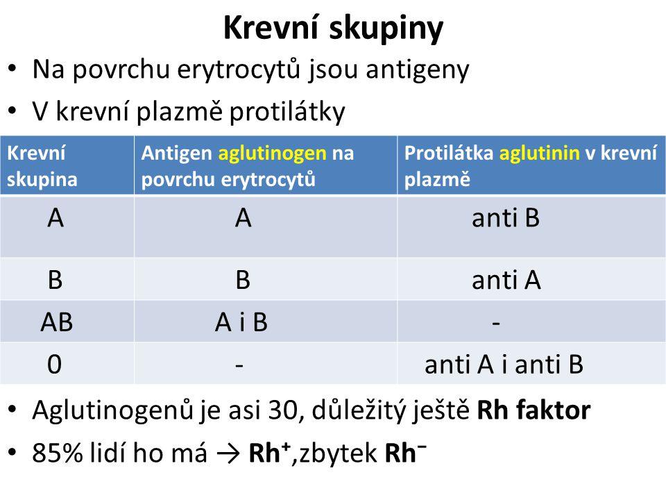 Krevní skupiny Na povrchu erytrocytů jsou antigeny
