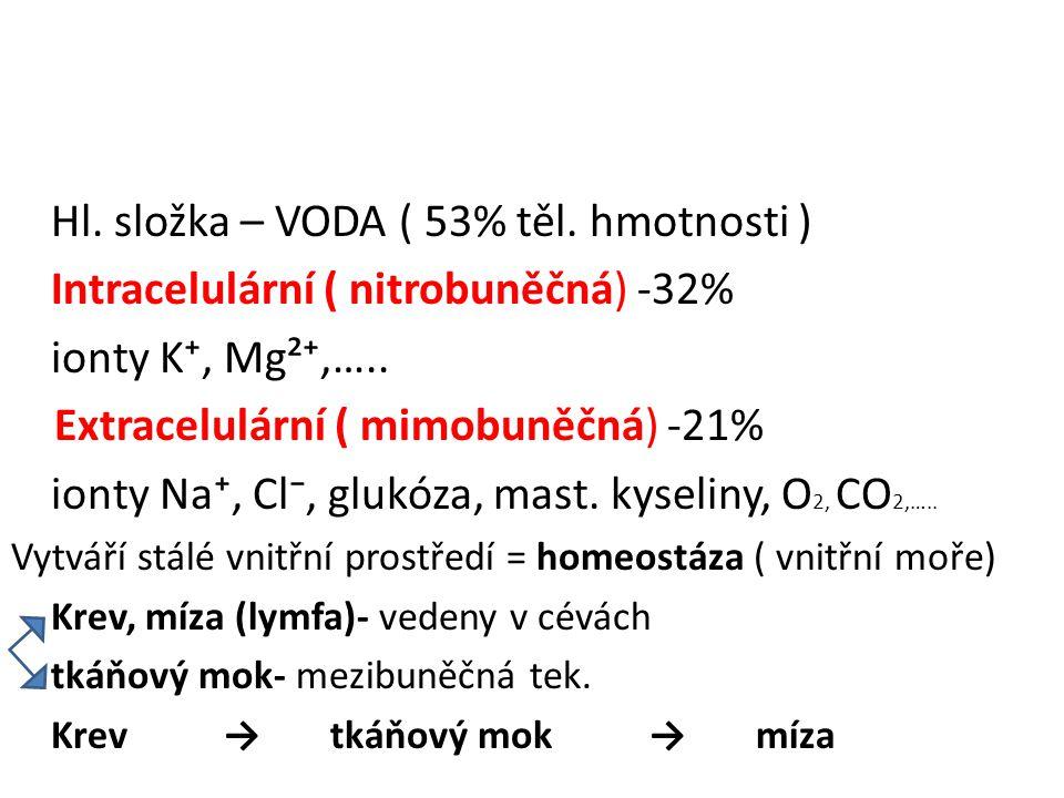 Hl. složka – VODA ( 53% těl. hmotnosti )