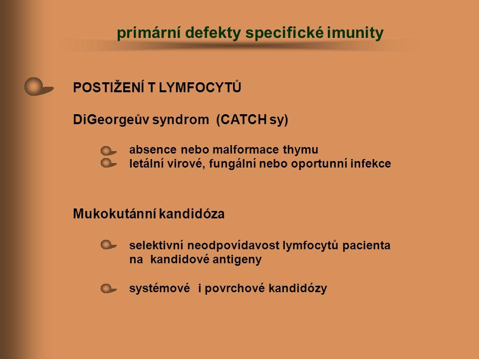 primární defekty specifické imunity