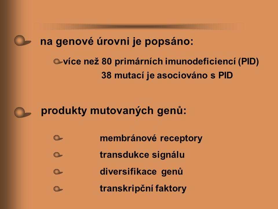 na genové úrovni je popsáno: