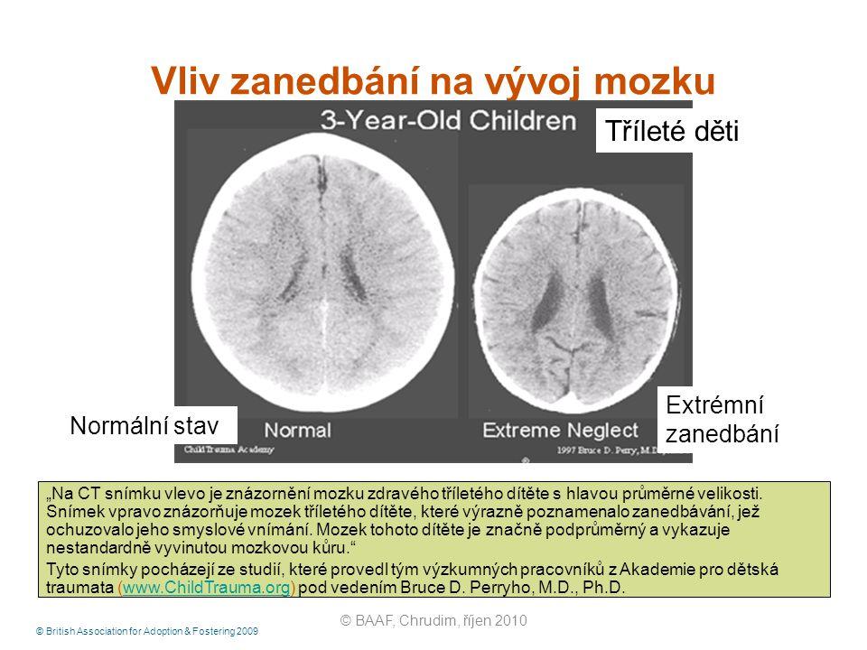 Vliv zanedbání na vývoj mozku