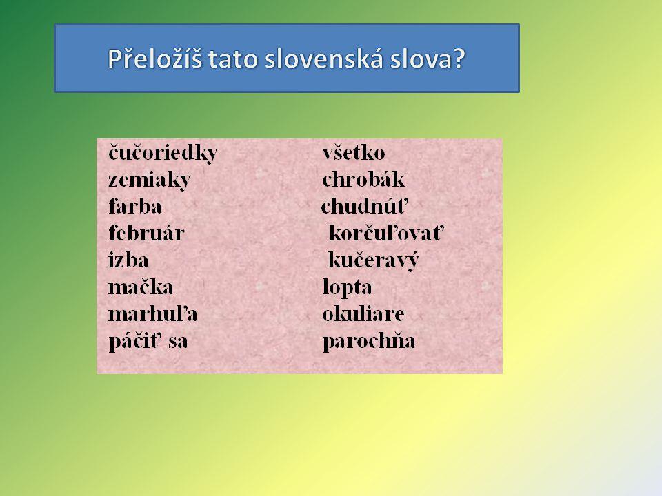 Přeložíš tato slovenská slova