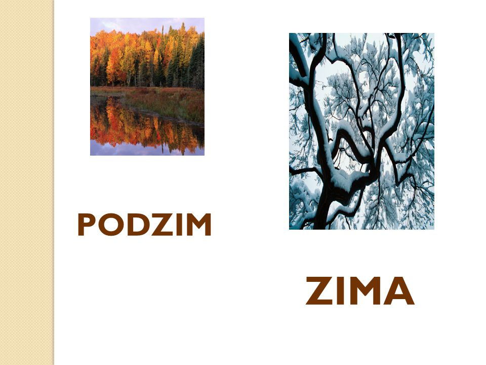 PODZIM ZIMA