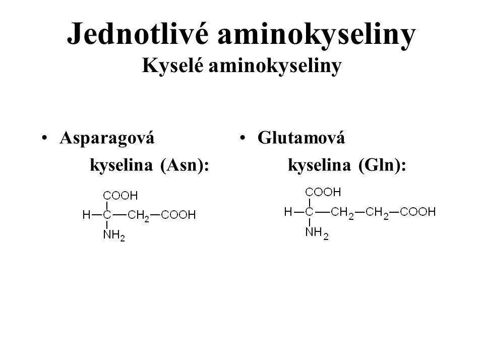 Jednotlivé aminokyseliny Kyselé aminokyseliny