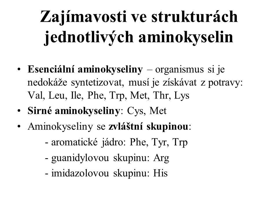 Zajímavosti ve strukturách jednotlivých aminokyselin