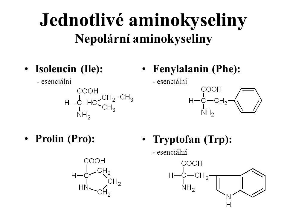 Jednotlivé aminokyseliny Nepolární aminokyseliny