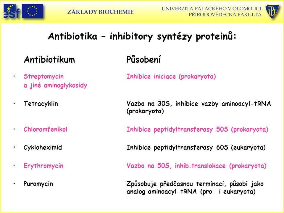 Antibiotika – inhibitory syntézy proteinů: