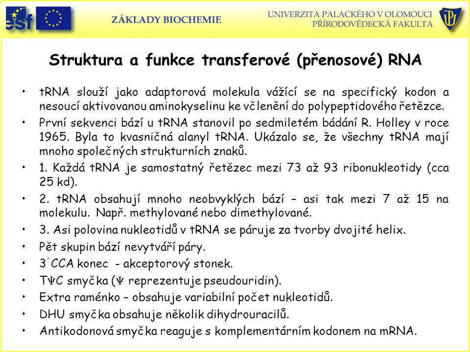 Struktura a funkce transferové (přenosové) RNA