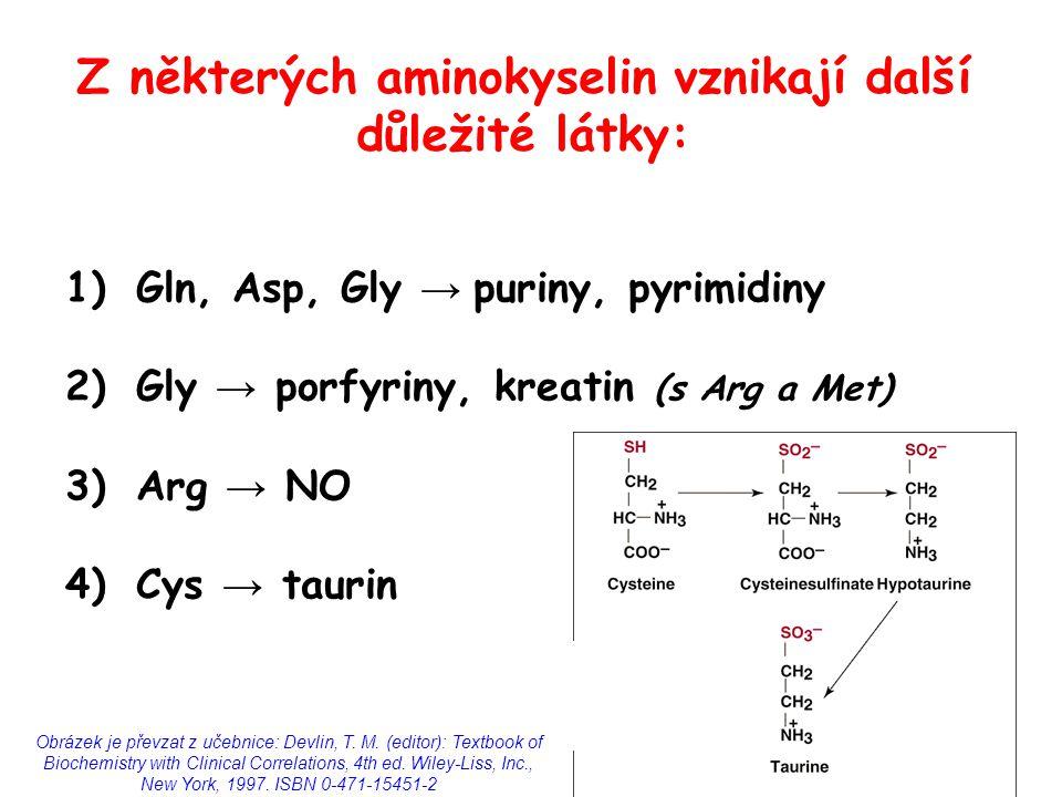 Z některých aminokyselin vznikají další důležité látky: