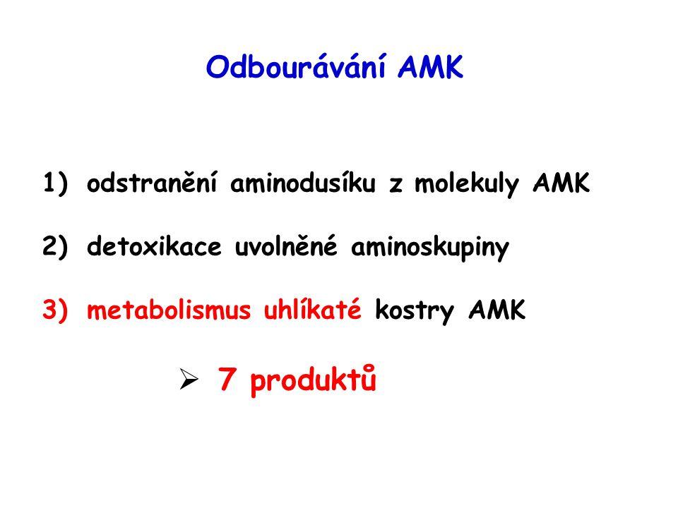 Odbourávání AMK 7 produktů odstranění aminodusíku z molekuly AMK