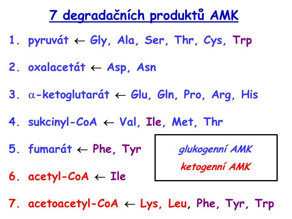 7 degradačních produktů AMK