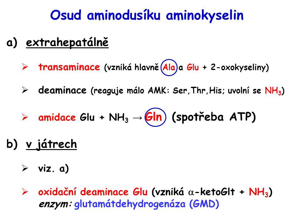 Osud aminodusíku aminokyselin