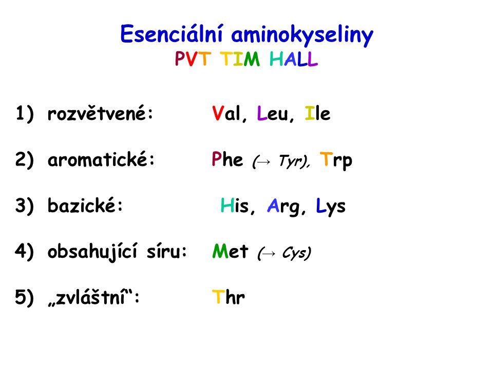 Esenciální aminokyseliny PVT TIM HALL