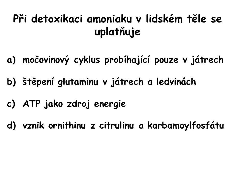 Při detoxikaci amoniaku v lidském těle se uplatňuje