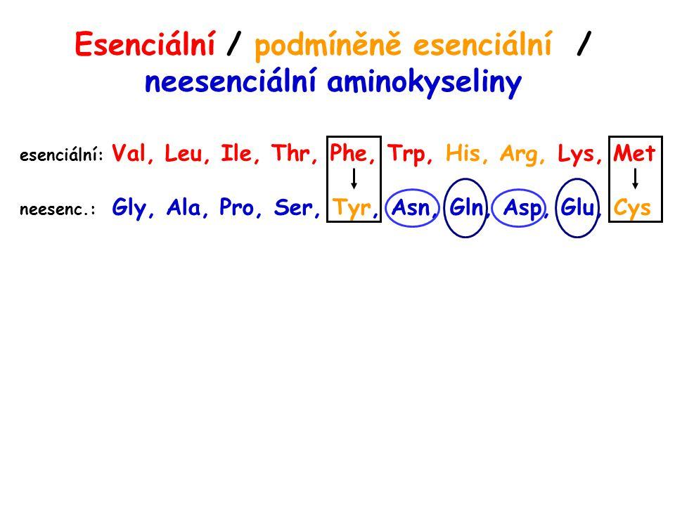 Esenciální / podmíněně esenciální / neesenciální aminokyseliny