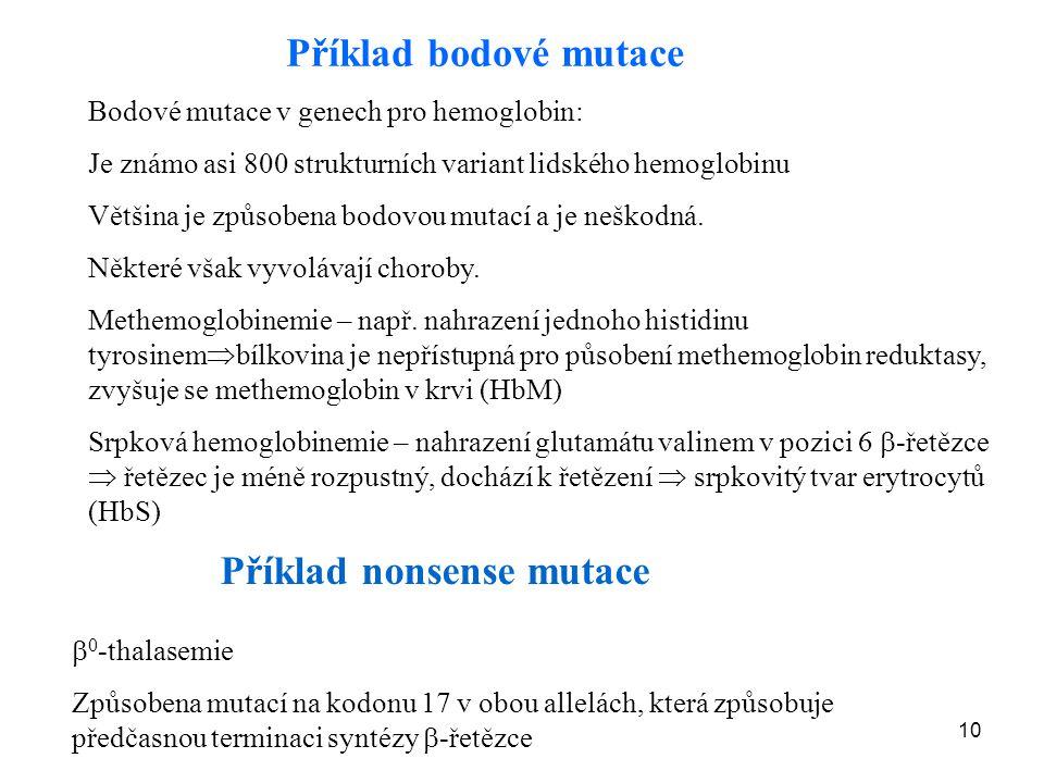 Příklad nonsense mutace