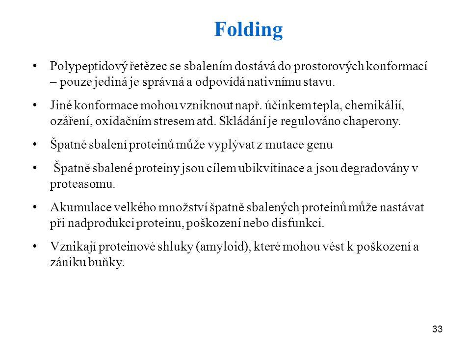 Folding Polypeptidový řetězec se sbalením dostává do prostorových konformací – pouze jediná je správná a odpovídá nativnímu stavu.