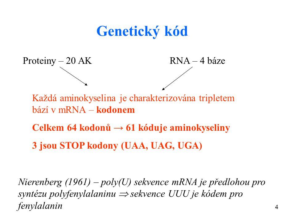 Genetický kód Proteiny – 20 AK RNA – 4 báze