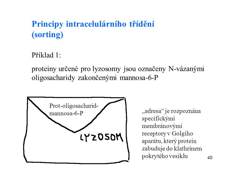 Principy intracelulárního třídění (sorting)