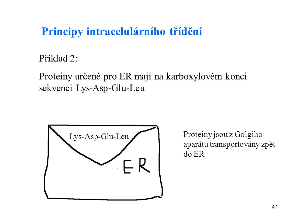 Principy intracelulárního třídění