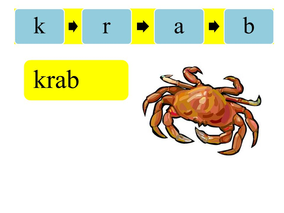 k r a b krab