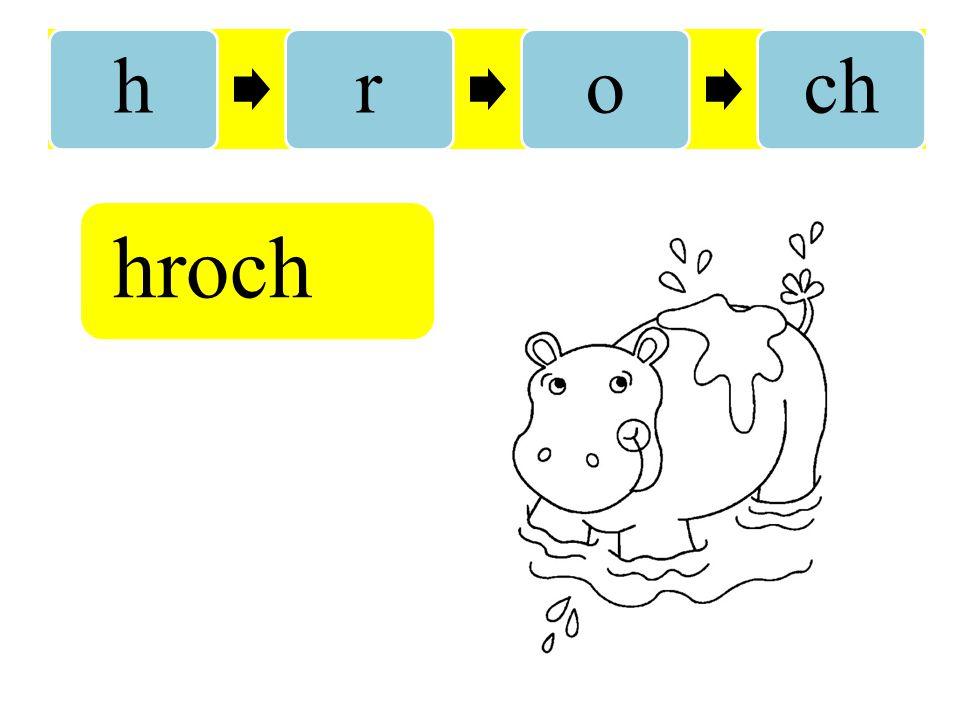 h r o ch hroch