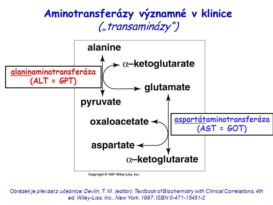 """Aminotransferázy významné v klinice (""""transaminázy )"""