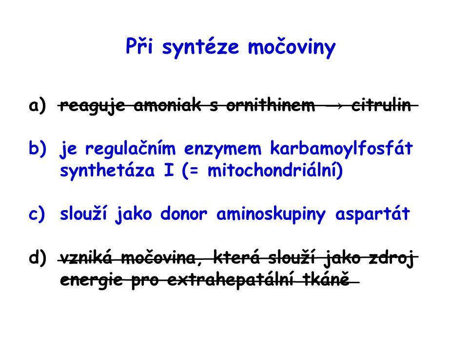 Při syntéze močoviny reaguje amoniak s ornithinem → citrulin