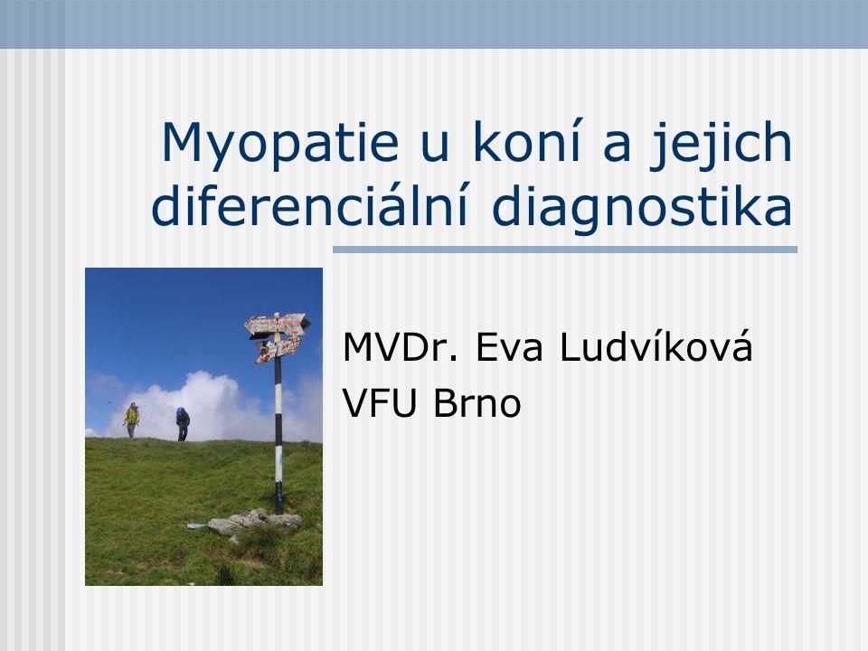 Myopatie u koní a jejich diferenciální diagnostika
