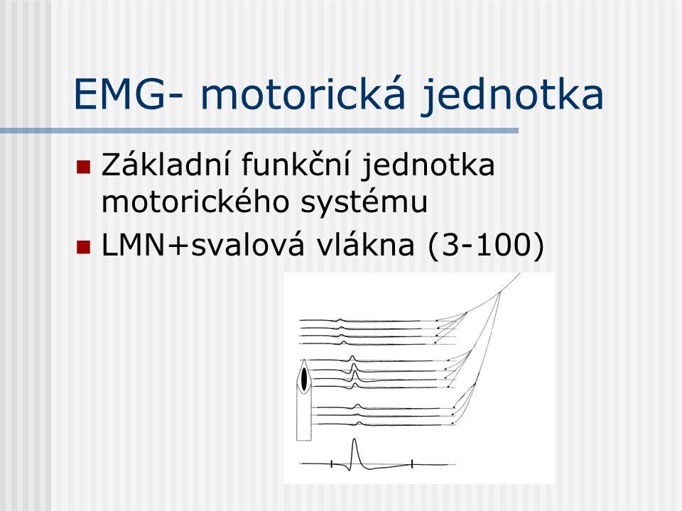 EMG- motorická jednotka