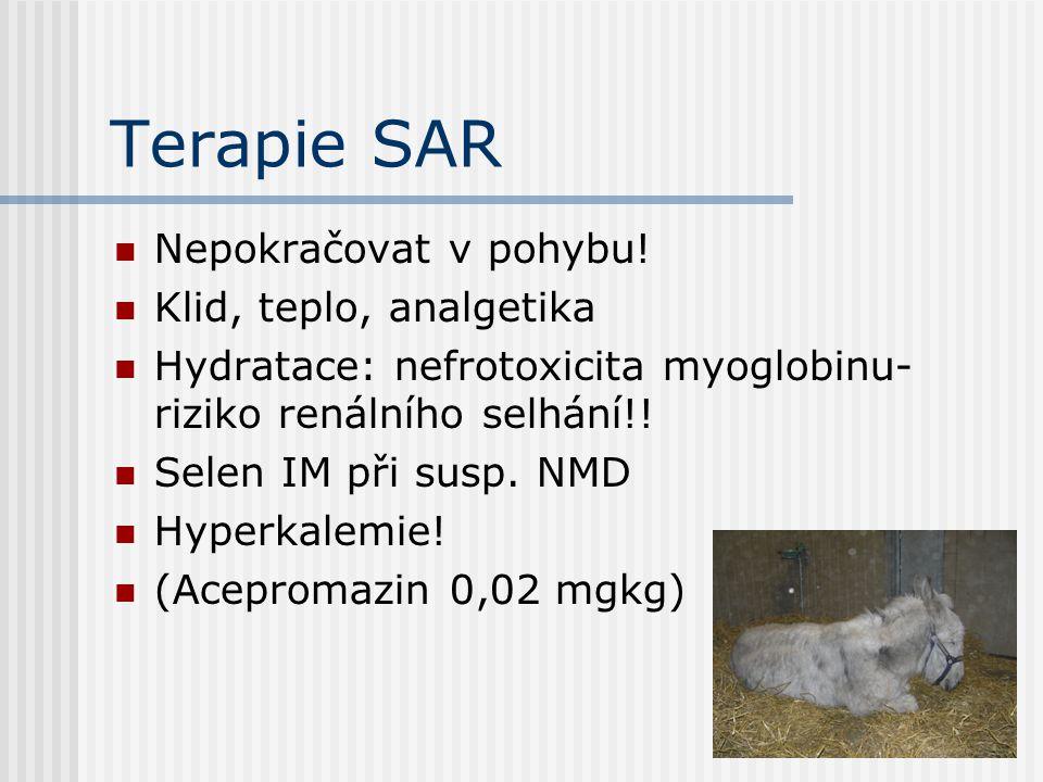 Terapie SAR Nepokračovat v pohybu! Klid, teplo, analgetika