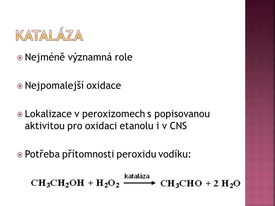 Kataláza Nejméně významná role Nejpomalejší oxidace