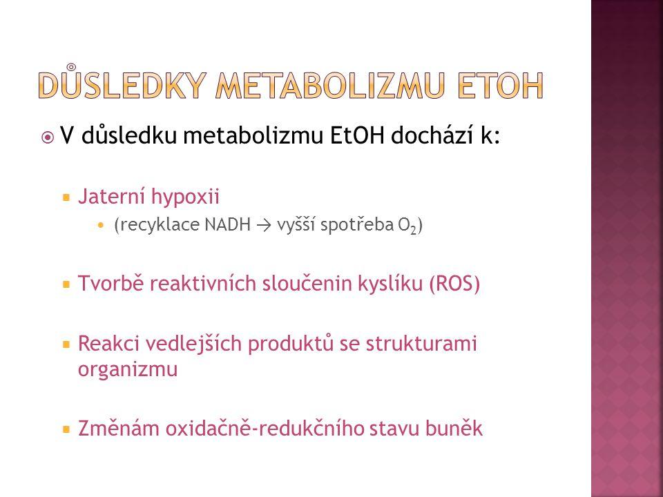 Důsledky metabolizmu etoh