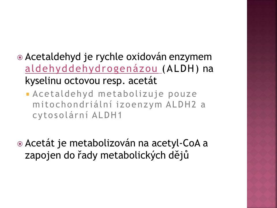 Acetaldehyd je rychle oxidován enzymem aldehyddehydrogenázou (ALDH) na kyselinu octovou resp. acetát