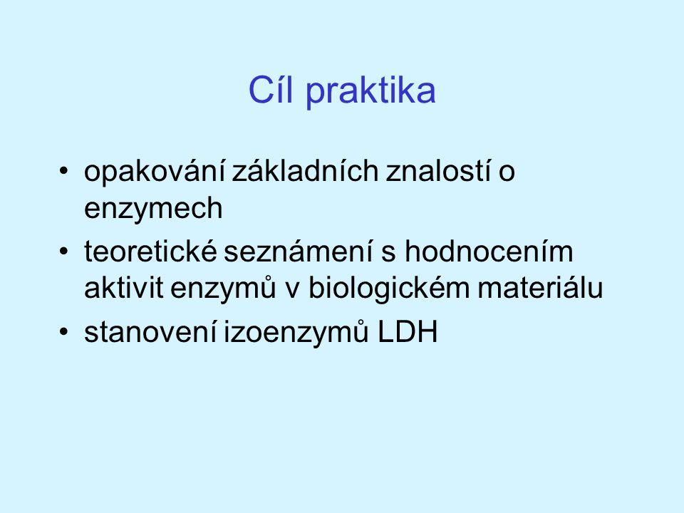 Cíl praktika opakování základních znalostí o enzymech
