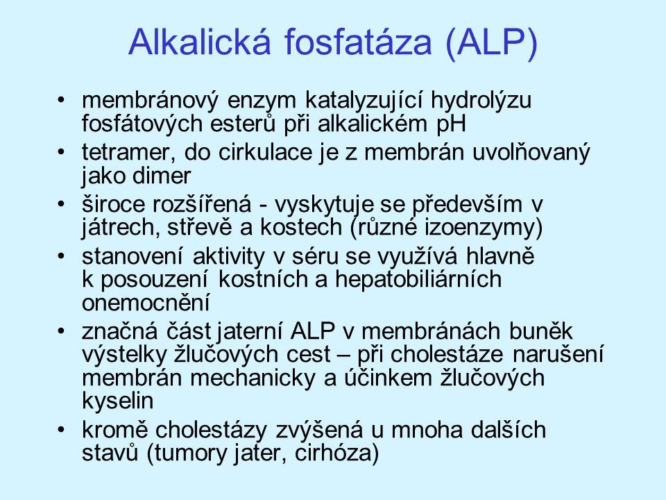 Alkalická fosfatáza (ALP)