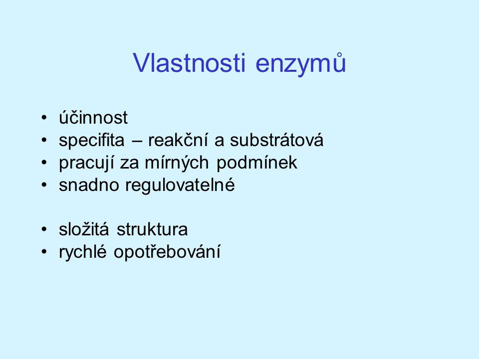 Vlastnosti enzymů účinnost specifita – reakční a substrátová