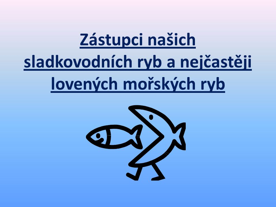 Zástupci našich sladkovodních ryb a nejčastěji lovených mořských ryb