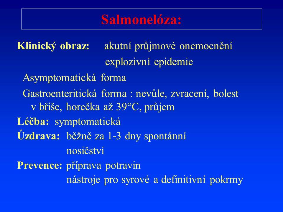 Salmonelóza: Klinický obraz: akutní průjmové onemocnění