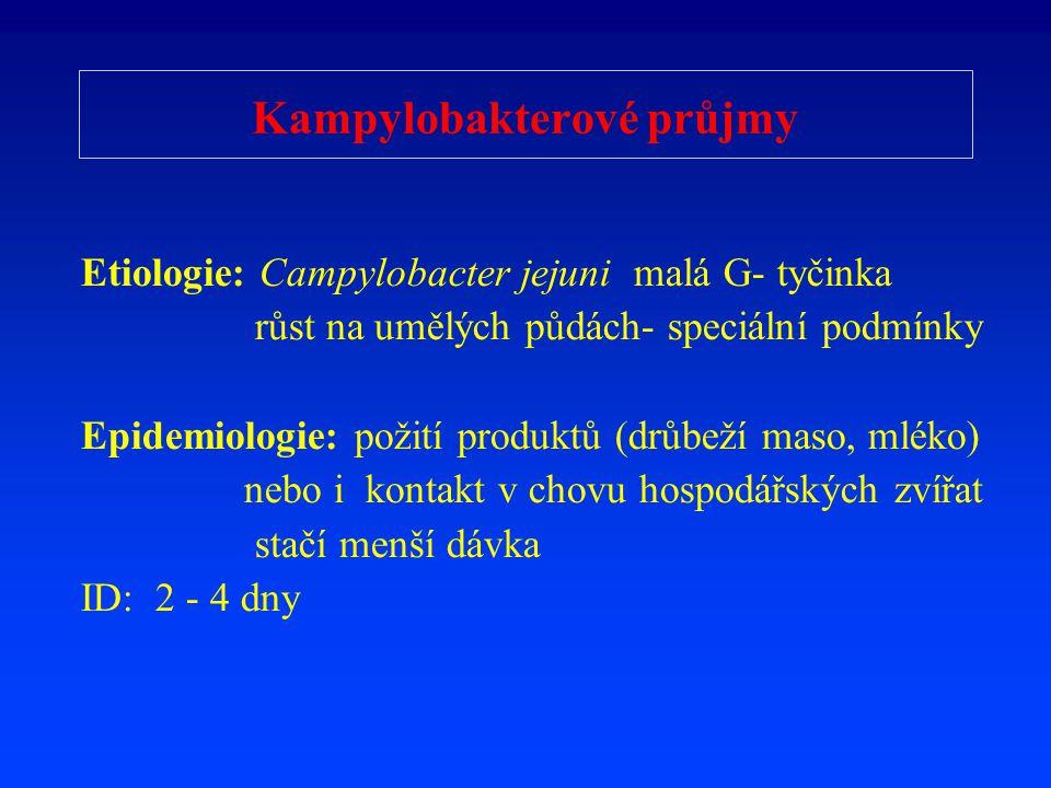 Kampylobakterové průjmy