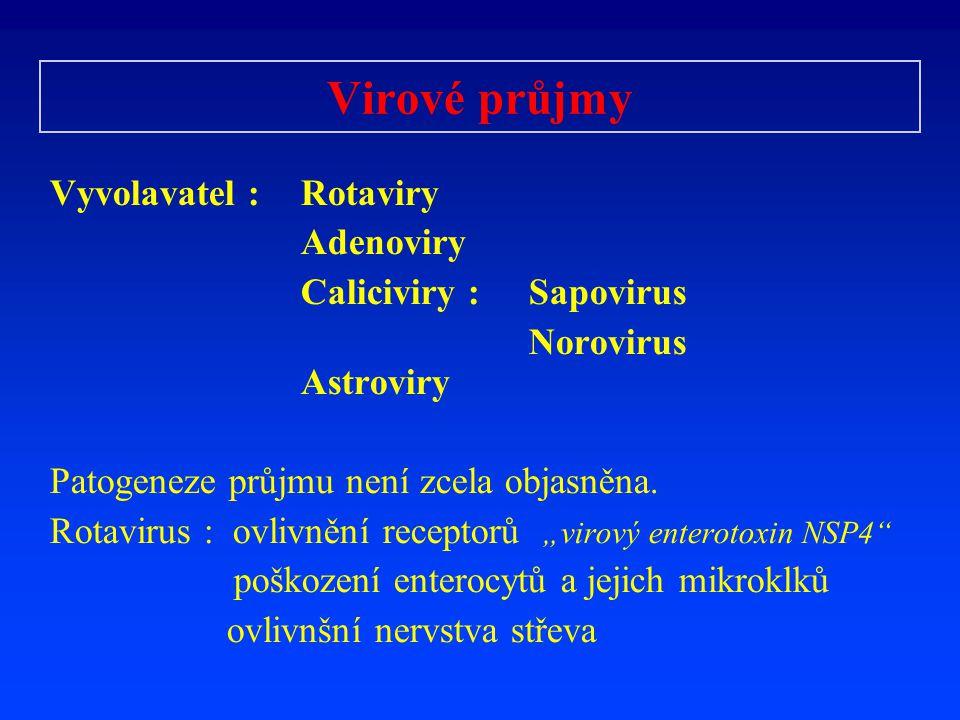 Virové průjmy Vyvolavatel : Rotaviry Adenoviry Caliciviry : Sapovirus