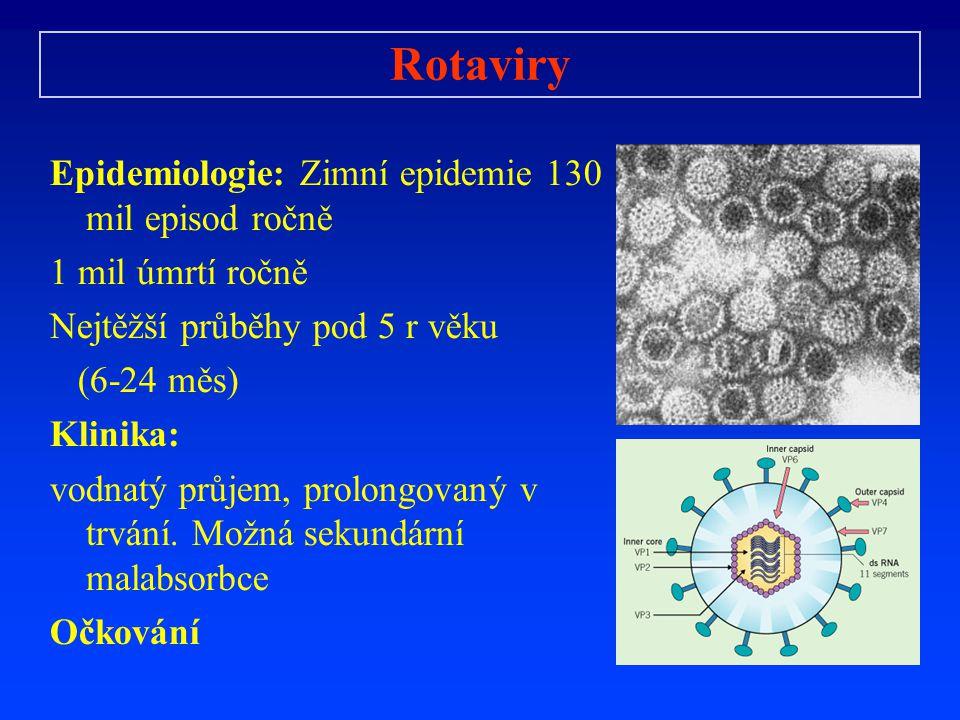 Rotaviry Epidemiologie: Zimní epidemie 130 mil episod ročně