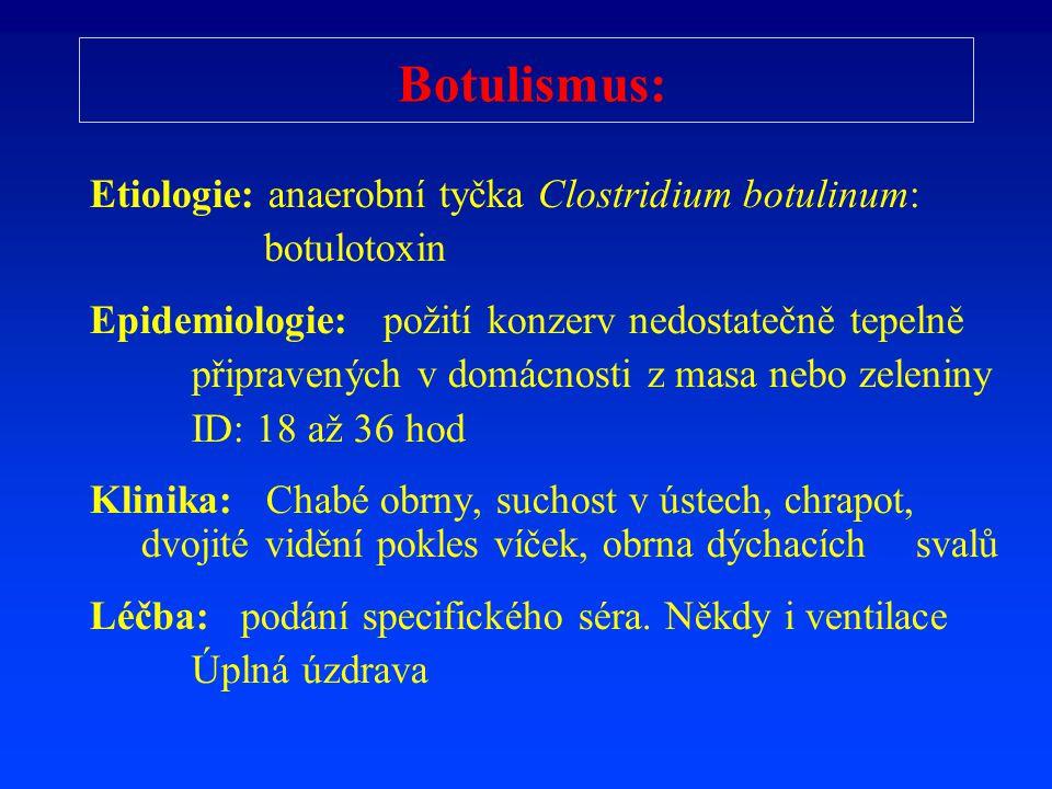 Botulismus: Etiologie: anaerobní tyčka Clostridium botulinum: