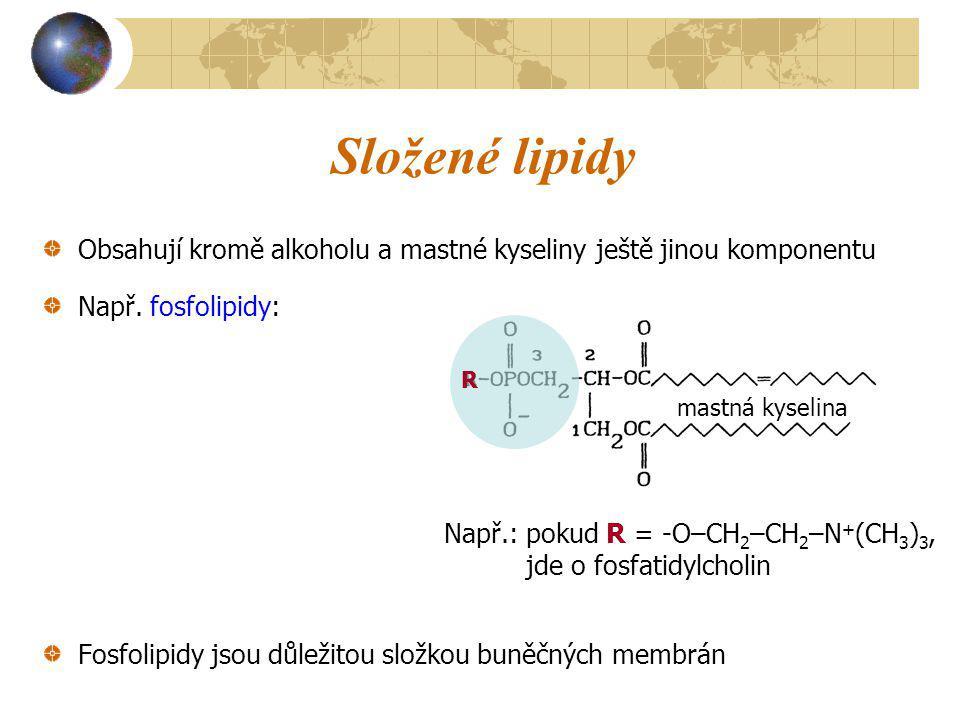 Složené lipidy Obsahují kromě alkoholu a mastné kyseliny ještě jinou komponentu. Např. fosfolipidy: