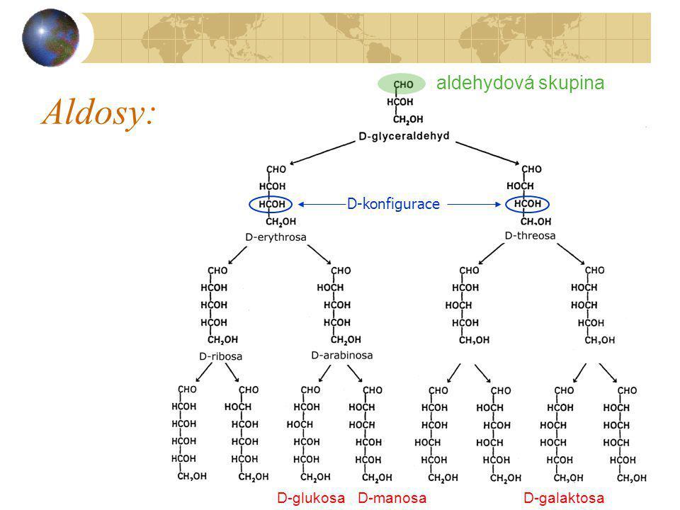 Aldosy: aldehydová skupina D-konfigurace D-glukosa D-manosa