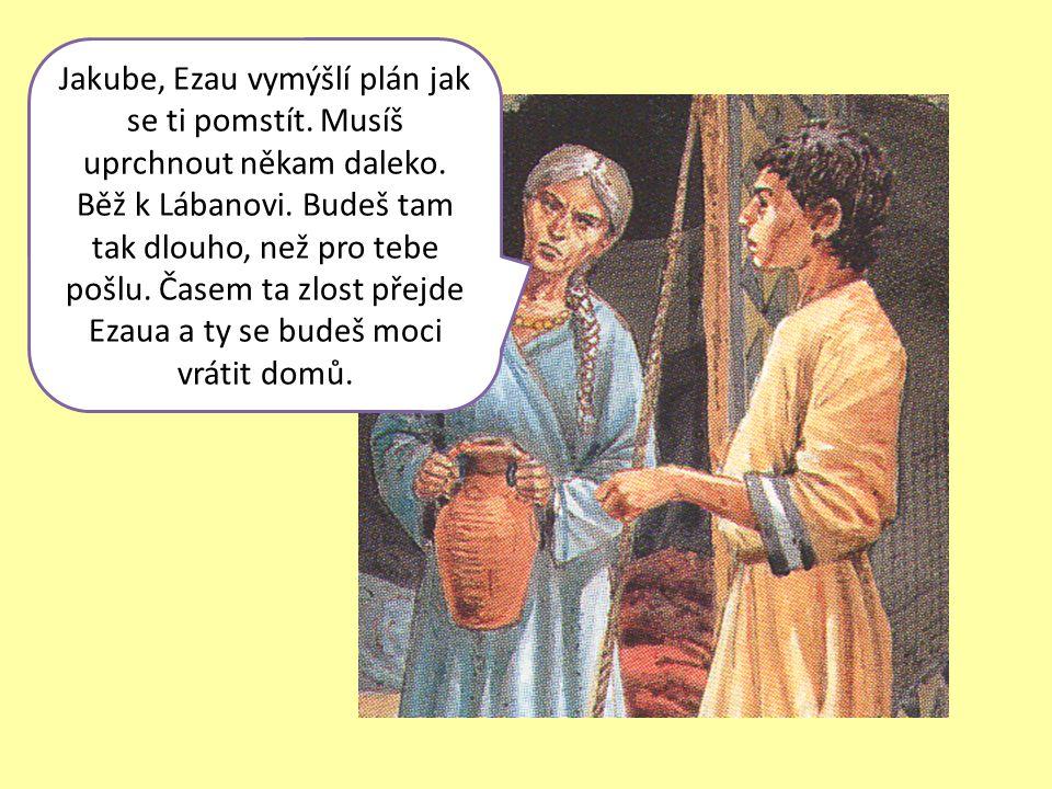 Jakube, Ezau vymýšlí plán jak se ti pomstít