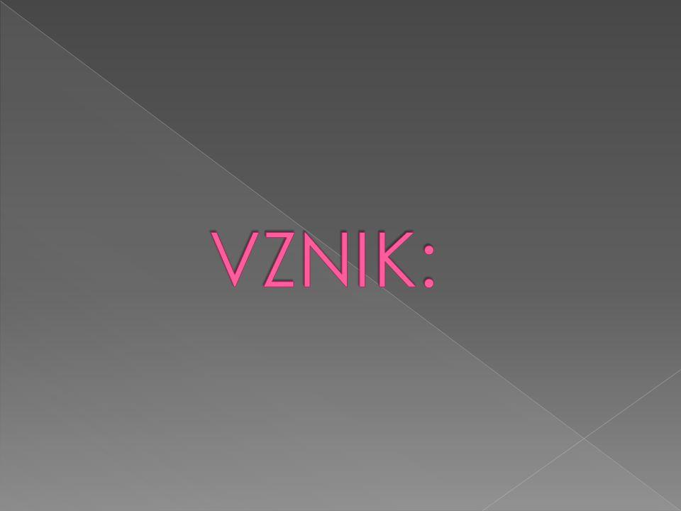VZNIK: