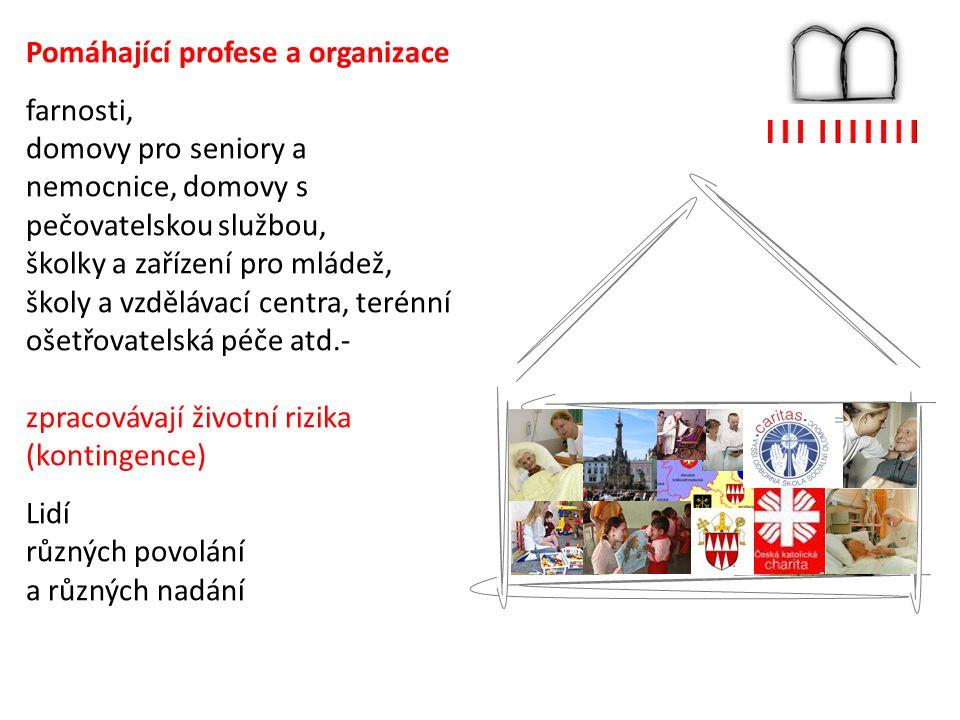 Pomáhající profese a organizace